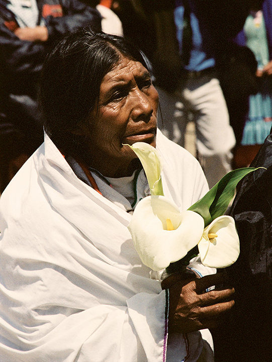 Indigenous Woman with Calla Lillies