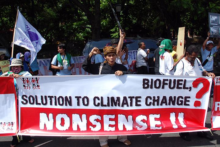 *10 IDA_biofuels_LANGELLE