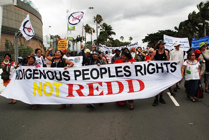 *25 rights not redd DSC_0267