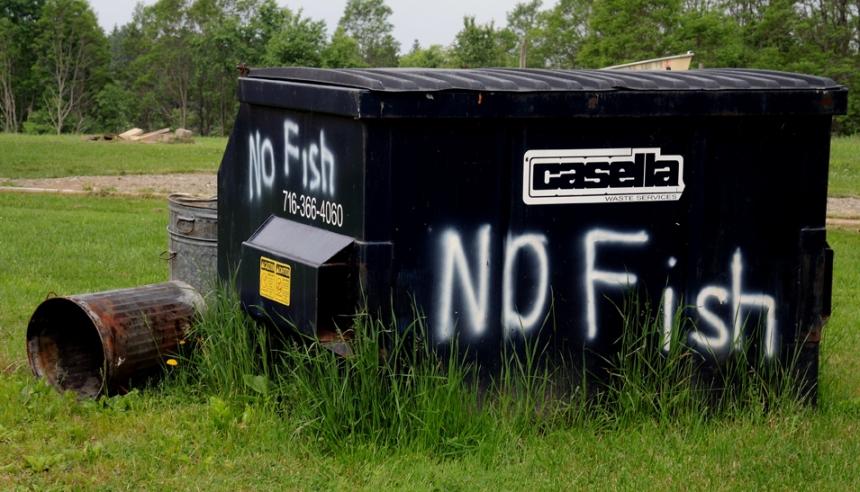 *NO FISH DSCN3262